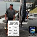 These guys from down south had a good time weighing in at the Hokianga. Well done Reel Image.